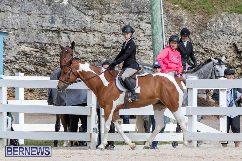 BHPA-Bermuda-Horse-Pony-Association-Spring-Show-March-24-2019-6244