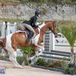 BHPA Bermuda Horse Pony Association Spring Show, March 24 2019-6254