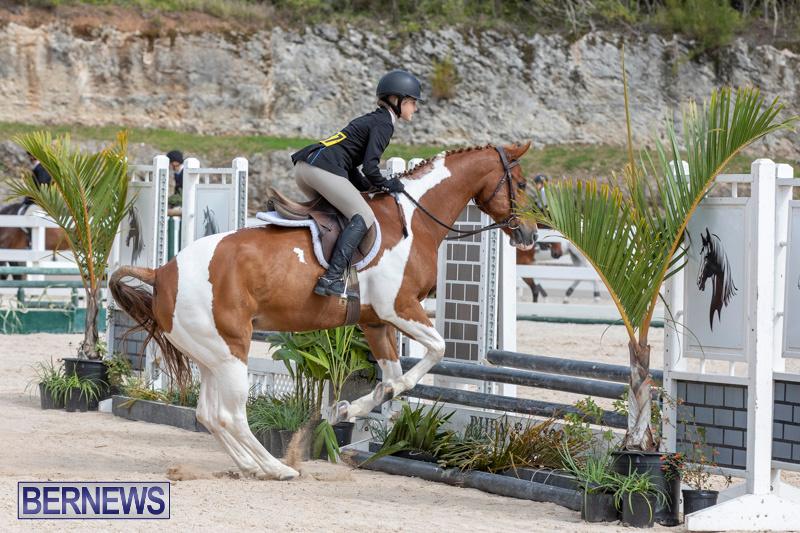 BHPA-Bermuda-Horse-Pony-Association-Spring-Show-March-24-2019-6254