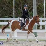 BHPA Bermuda Horse Pony Association Spring Show, March 24 2019-6259
