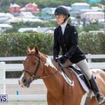 BHPA Bermuda Horse Pony Association Spring Show, March 24 2019-6264