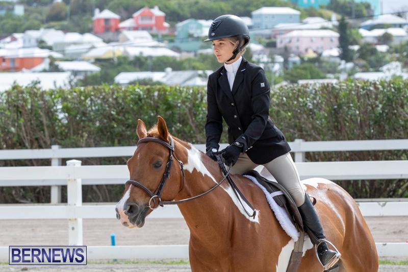 BHPA-Bermuda-Horse-Pony-Association-Spring-Show-March-24-2019-6264