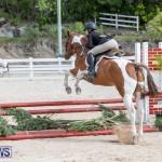 BHPA Bermuda Horse Pony Association Spring Show, March 24 2019-6268