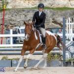 BHPA Bermuda Horse Pony Association Spring Show, March 24 2019-6272