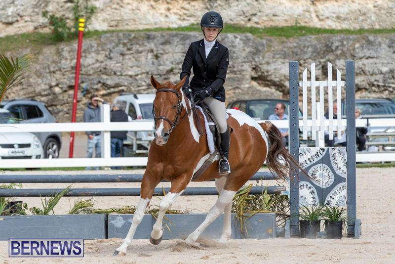 BHPA-Bermuda-Horse-Pony-Association-Spring-Show-March-24-2019-6272
