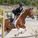 BHPA Bermuda Horse Pony Association Spring Show, March 24 2019-6275