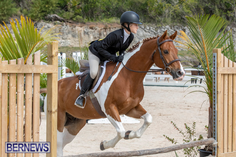 BHPA-Bermuda-Horse-Pony-Association-Spring-Show-March-24-2019-6275