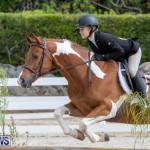 BHPA Bermuda Horse Pony Association Spring Show, March 24 2019-6278