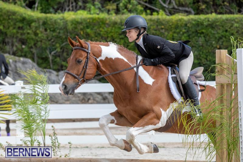 BHPA-Bermuda-Horse-Pony-Association-Spring-Show-March-24-2019-6278