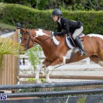 BHPA Bermuda Horse Pony Association Spring Show, March 24 2019-6279