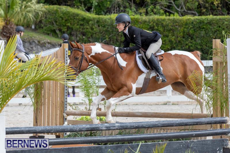 BHPA-Bermuda-Horse-Pony-Association-Spring-Show-March-24-2019-6279