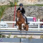 BHPA Bermuda Horse Pony Association Spring Show, March 24 2019-6283