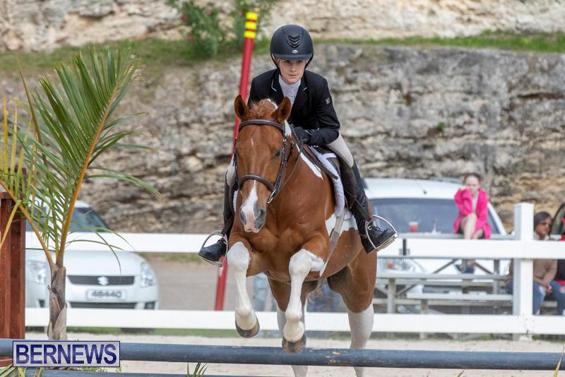 BHPA-Bermuda-Horse-Pony-Association-Spring-Show-March-24-2019-6284