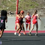 BNA Youth & Senior Netball Bermuda March 16 2019 (13)