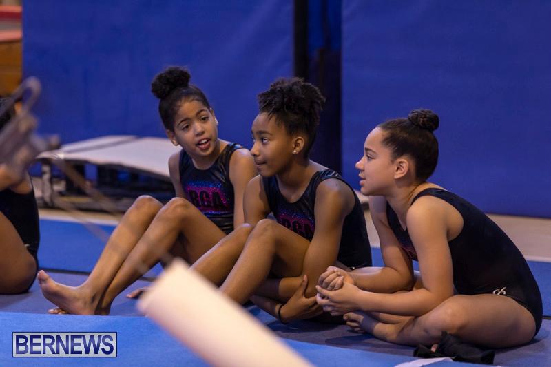 Bermuda-International-Gymnastics-Challenge-March-16-2019-0445