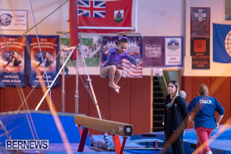 Bermuda-International-Gymnastics-Challenge-March-16-2019-0461