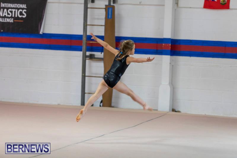 Bermuda-International-Gymnastics-Challenge-March-16-2019-0478