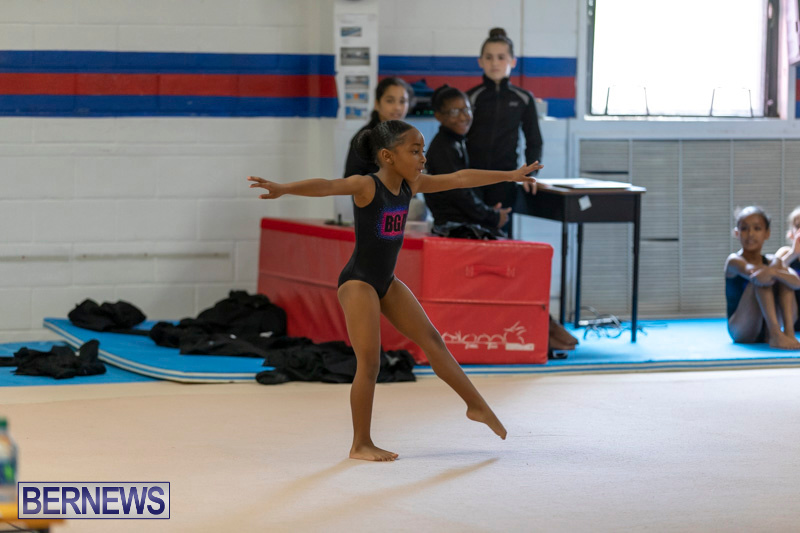 Bermuda-International-Gymnastics-Challenge-March-16-2019-0498
