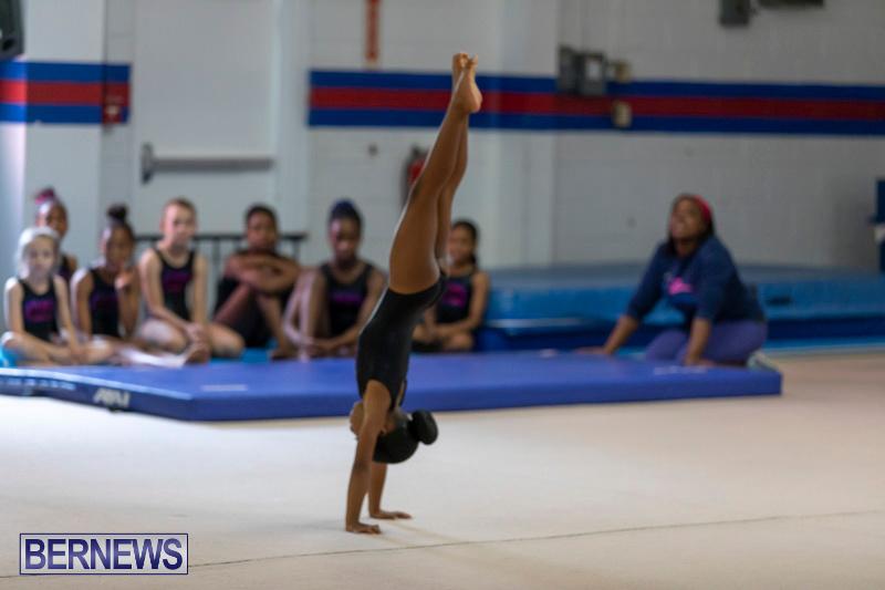 Bermuda-International-Gymnastics-Challenge-March-16-2019-0502