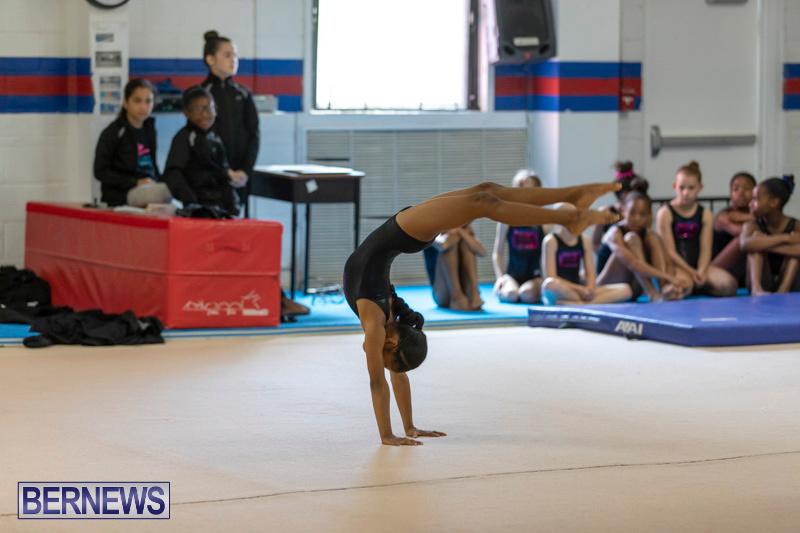 Bermuda-International-Gymnastics-Challenge-March-16-2019-0529