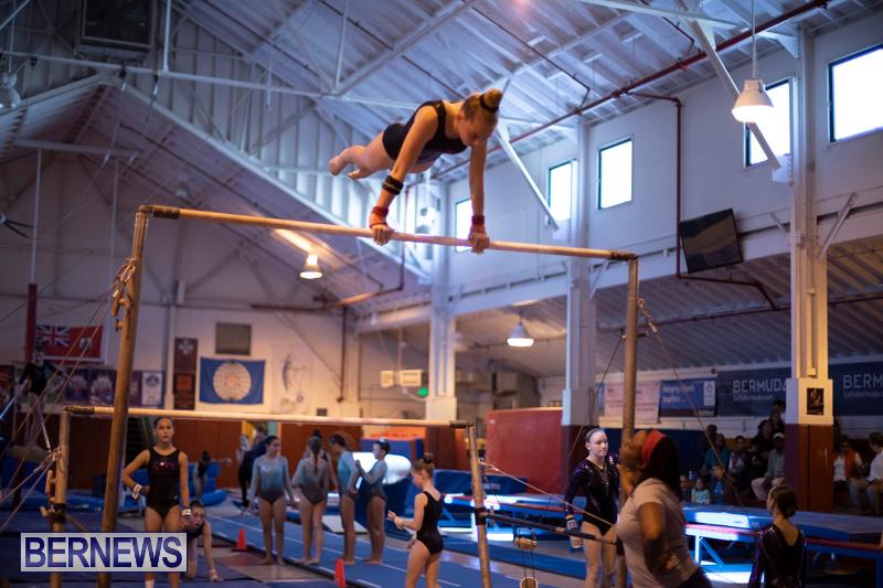 Bermuda-International-Gymnastics-Challenge-March-16-2019-1270
