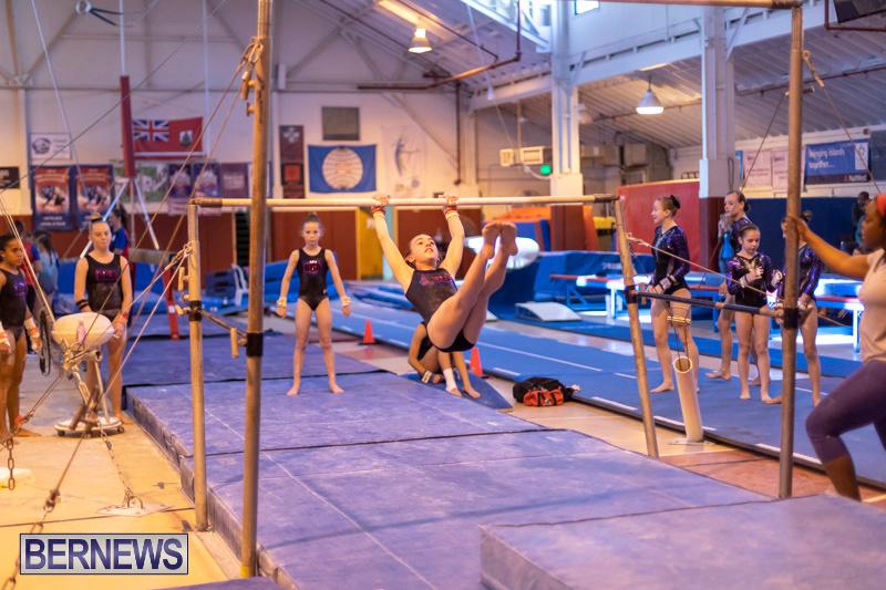 Bermuda-International-Gymnastics-Challenge-March-16-2019-1281