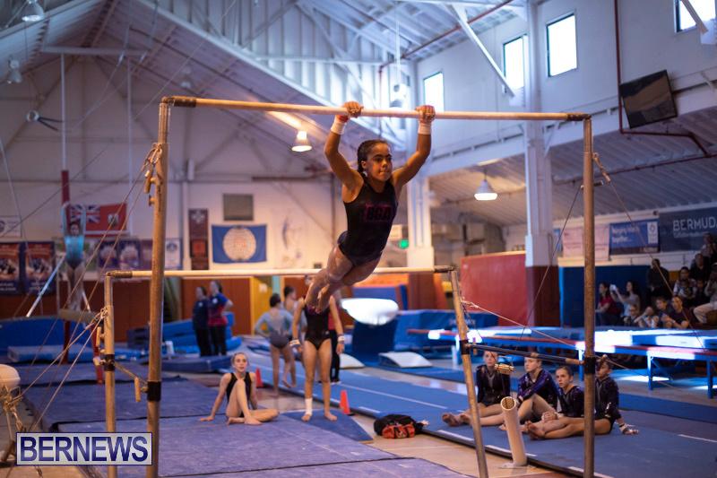 Bermuda-International-Gymnastics-Challenge-March-16-2019-1340