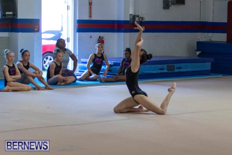 Bermuda-International-Gymnastics-Challenge-March-16-2019-1365