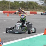 Bermuda Karting Club racing Southside Motorsports Park, March 3 2019-1214