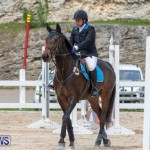 FEI Jumping World Challenge 2019 Competition 2 and BEF Support Show Bermuda, March 2 2019-1015