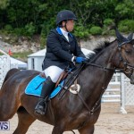 FEI Jumping World Challenge 2019 Competition 2 and BEF Support Show Bermuda, March 2 2019-1018
