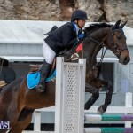 FEI Jumping World Challenge 2019 Competition 2 and BEF Support Show Bermuda, March 2 2019-1022