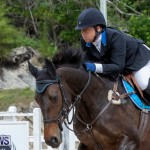 FEI Jumping World Challenge 2019 Competition 2 and BEF Support Show Bermuda, March 2 2019-1034