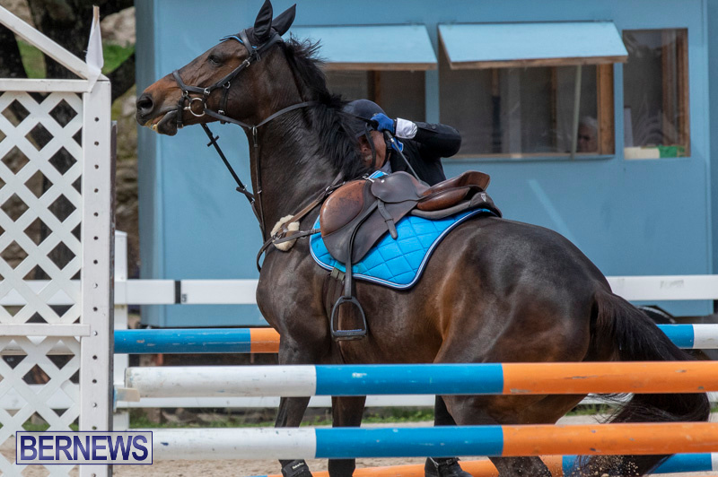 FEI-Jumping-World-Challenge-2019-Competition-2-and-BEF-Support-Show-Bermuda-March-2-2019-1041