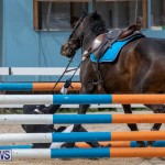 FEI Jumping World Challenge 2019 Competition 2 and BEF Support Show Bermuda, March 2 2019-1045