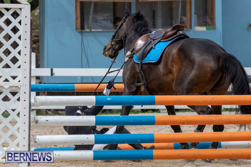 FEI-Jumping-World-Challenge-2019-Competition-2-and-BEF-Support-Show-Bermuda-March-2-2019-1045