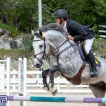 FEI Jumping World Challenge 2019 Competition 2 and BEF Support Show Bermuda, March 2 2019-1078