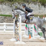 FEI Jumping World Challenge 2019 Competition 2 and BEF Support Show Bermuda, March 2 2019-1093