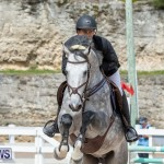 FEI Jumping World Challenge 2019 Competition 2 and BEF Support Show Bermuda, March 2 2019-1107