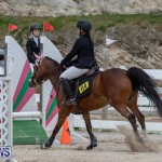 FEI Jumping World Challenge 2019 Competition 2 and BEF Support Show Bermuda, March 2 2019-1151