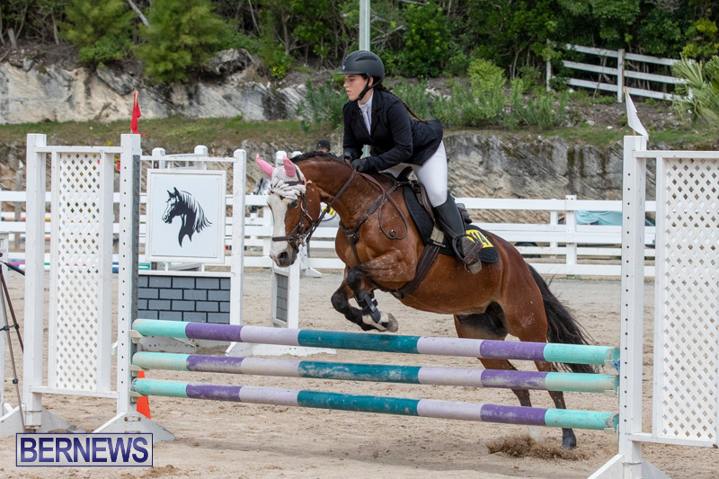 FEI-Jumping-World-Challenge-2019-Competition-2-and-BEF-Support-Show-Bermuda-March-2-2019-1166