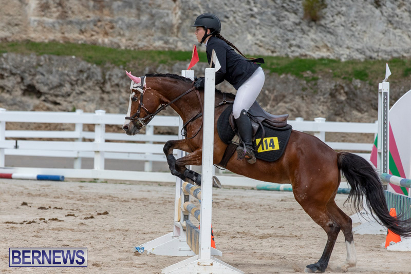 FEI-Jumping-World-Challenge-2019-Competition-2-and-BEF-Support-Show-Bermuda-March-2-2019-1182