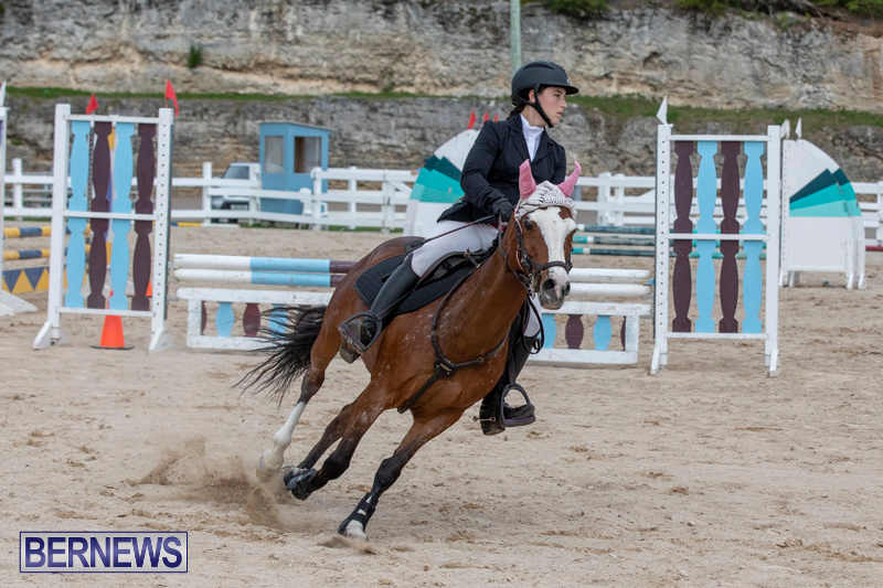 FEI-Jumping-World-Challenge-2019-Competition-2-and-BEF-Support-Show-Bermuda-March-2-2019-1188