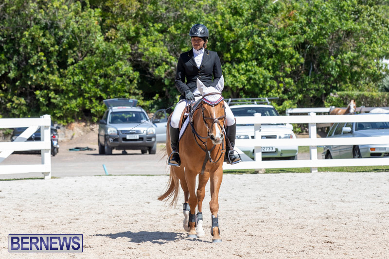 FEI-Jumping-World-Challenge-Competition-3-Bermuda-March-9-2019-0013