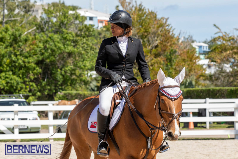 FEI-Jumping-World-Challenge-Competition-3-Bermuda-March-9-2019-0015