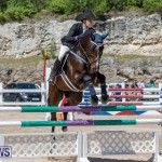 FEI Jumping World Challenge Competition 3 Bermuda, March 9 2019-0022
