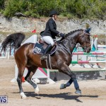 FEI Jumping World Challenge Competition 3 Bermuda, March 9 2019-0025