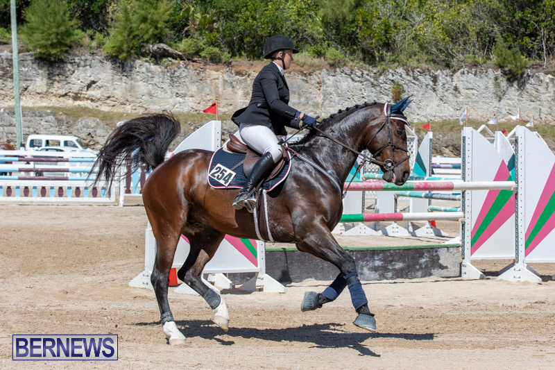 FEI-Jumping-World-Challenge-Competition-3-Bermuda-March-9-2019-0025