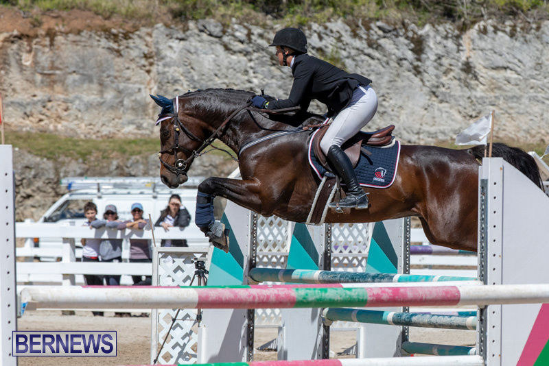 FEI-Jumping-World-Challenge-Competition-3-Bermuda-March-9-2019-0029