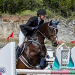 FEI Jumping World Challenge Competition 3 Bermuda, March 9 2019-0034